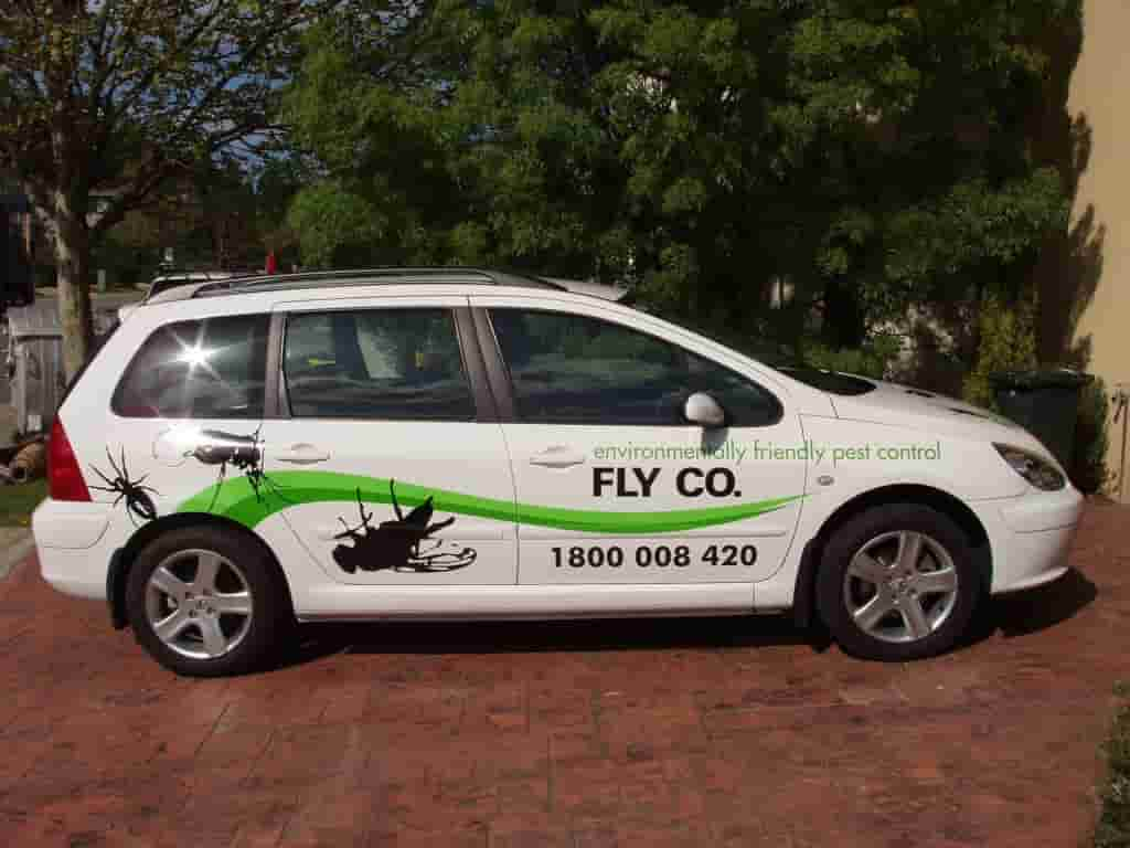 Vehicle Signage fly co